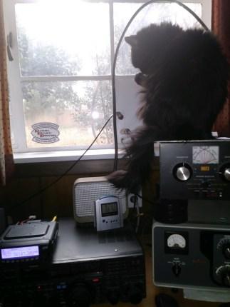CQ, CQ ... Radio Dietrich ...